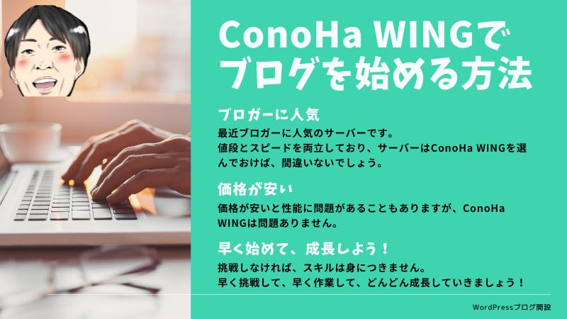ConoHa WINGで月10万円稼ぐ副業ブログの始め方〜WordPress設定全解説〜